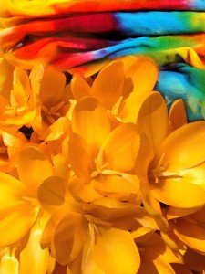 Bring the sun out with Jelly Bean Colour. Tie Dye from Hornby Island!